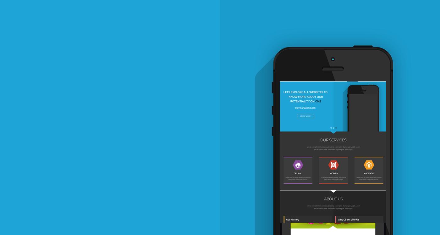 eCommerce Web Design & Development Services - ShareSoft Technology